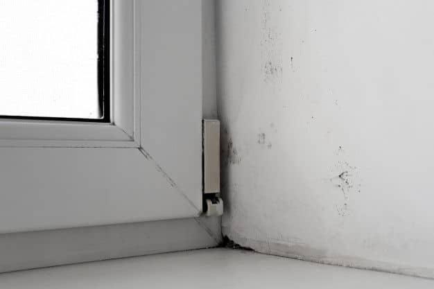 Soluciones para la humedad en casa